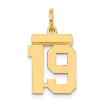14k Small Polished Number 19 Charm