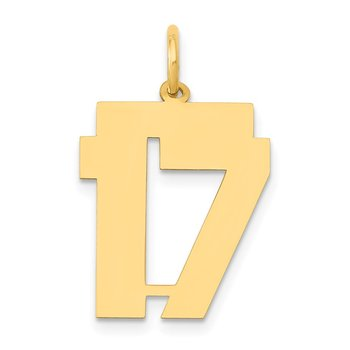 14k Medium Polished Number 17 Charm