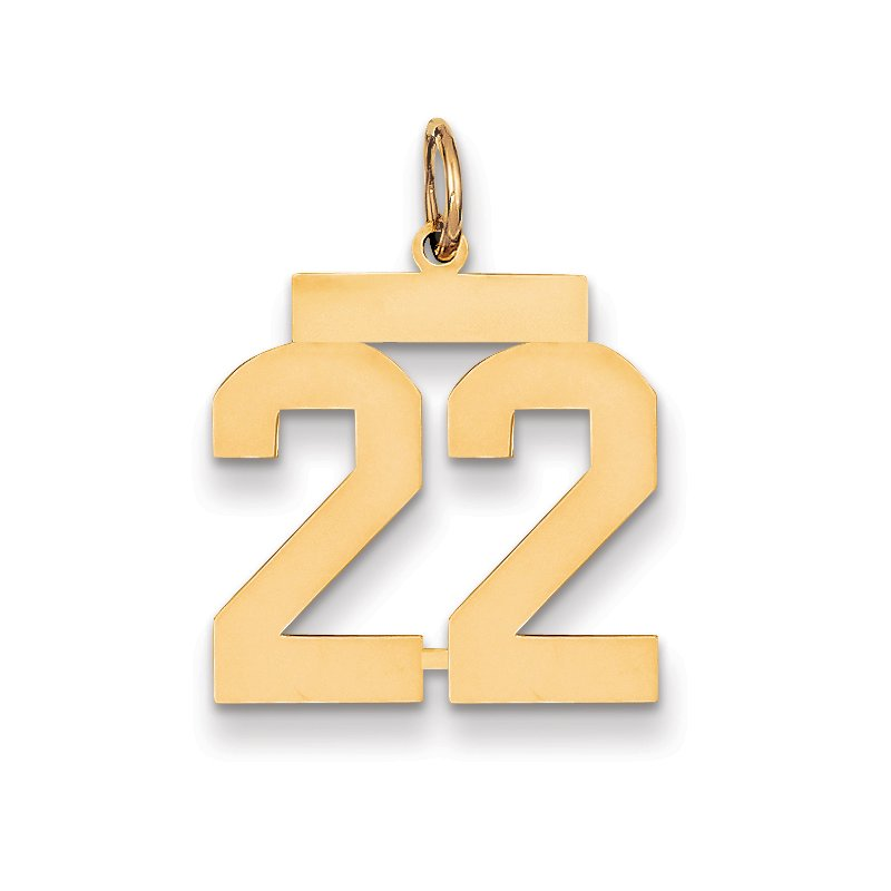 Quality Gold 14k Medium Polished Number 22 Charm