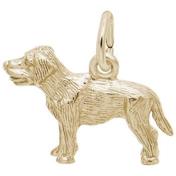 Labrador Retriever Dog Charm