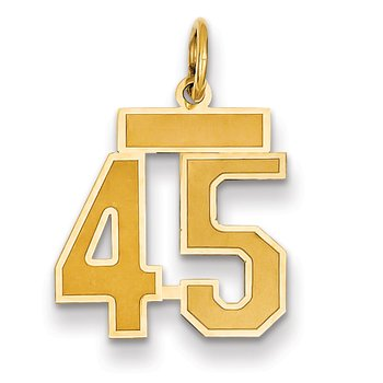 14k Small Satin Number 45 Charm
