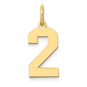 14k Medium Polished Number 2 Charm