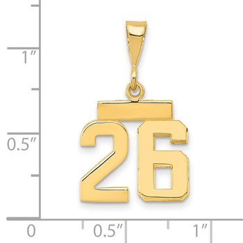 14k Small Polished Number 26 Charm