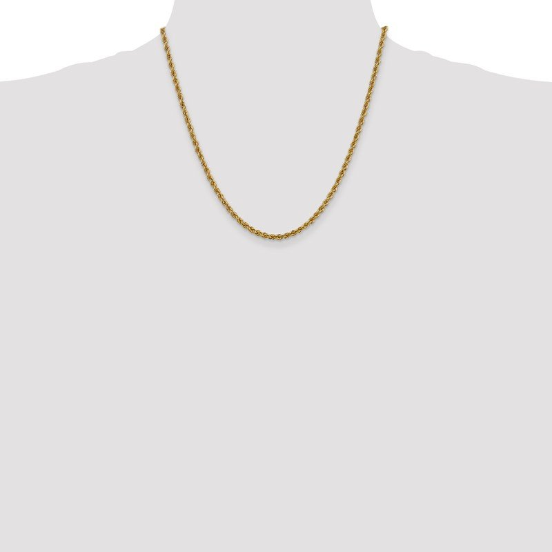 Leslie's Leslie's 14K 3mm Solid Regular Rope Chain