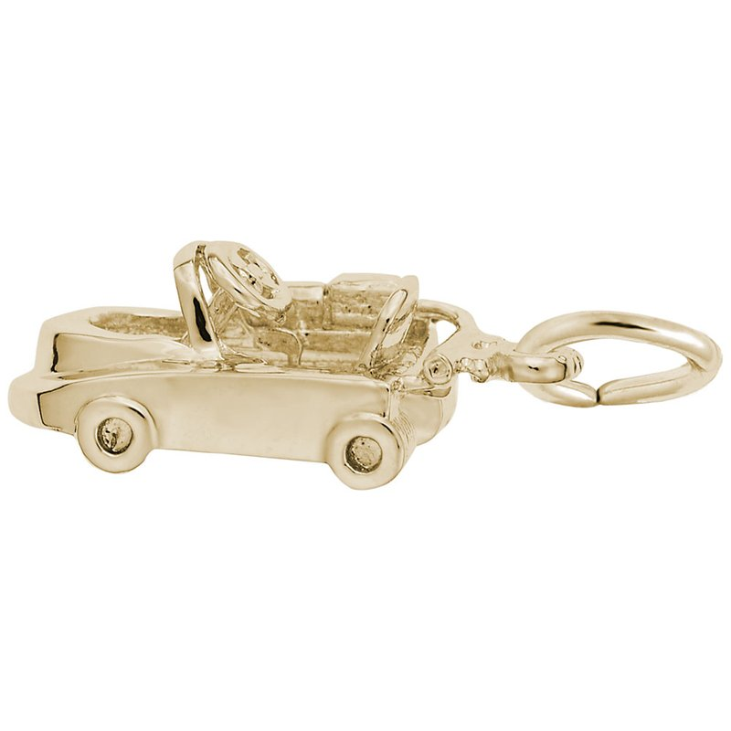 Rembrandt Charms 8155-0