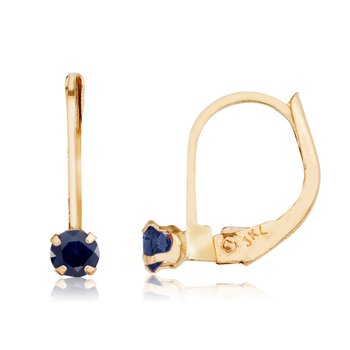14k Petite Sapphire Leverback Earrings
