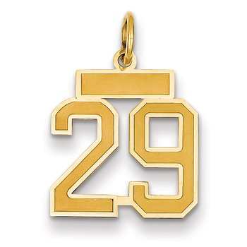 14k Small Satin Number 29 Charm