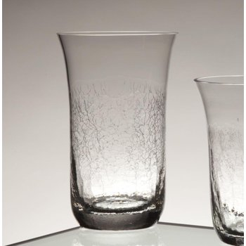 Beverage Tumbler/Highball