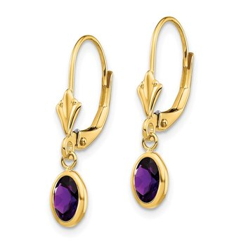 14k 6x4mm February/Amethyst Earrings