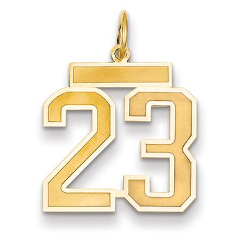 14k Medium Satin Number 23 Charm