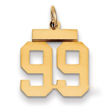 14k Small Polished Number 99 Charm