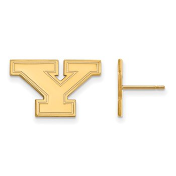 Gold Youngstown State University NCAA Earrings