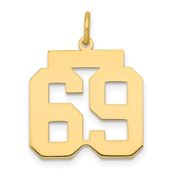 14k Medium Polished Number 69 Charm