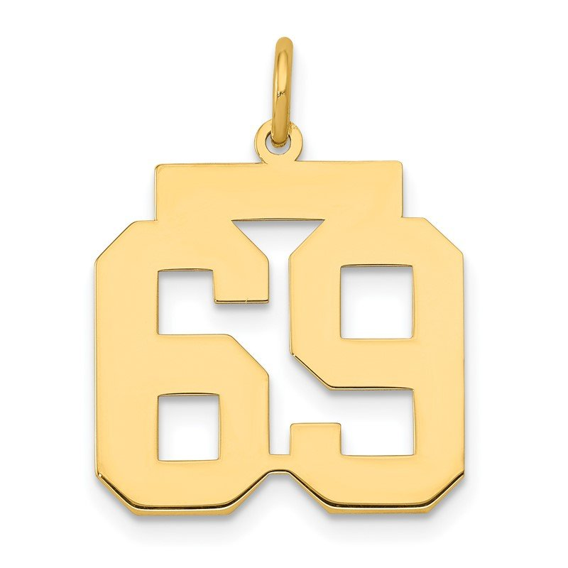Quality Gold 14k Medium Polished Number 69 Charm