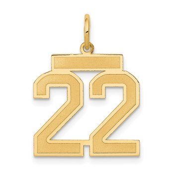 14k Medium Satin Number 22 Charm