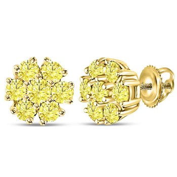 10kt Yellow Gold Womens Round Color Enhanced Diamond Flower Cluster Earrings 1/2 Cttw
