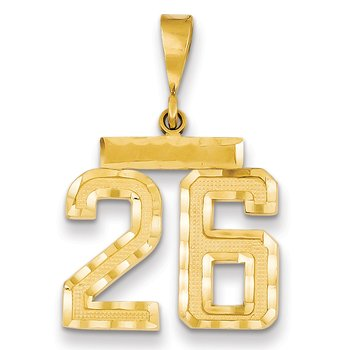 14k Medium Diamond-cut Number 26 Charm