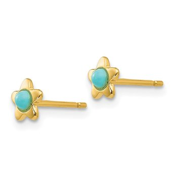 14k Polished Turquoise Star Post Earrings