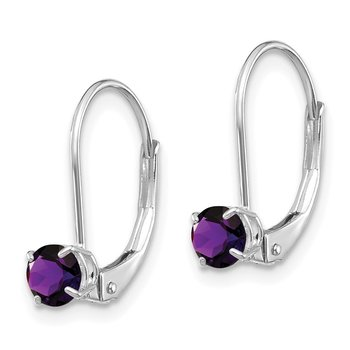 14k White Gold 4mm Amethyst/February Earrings