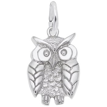 Wise Owl Charm