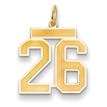 14k Medium Satin Number 26 Charm