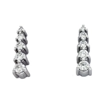 White Gold Journey Earring