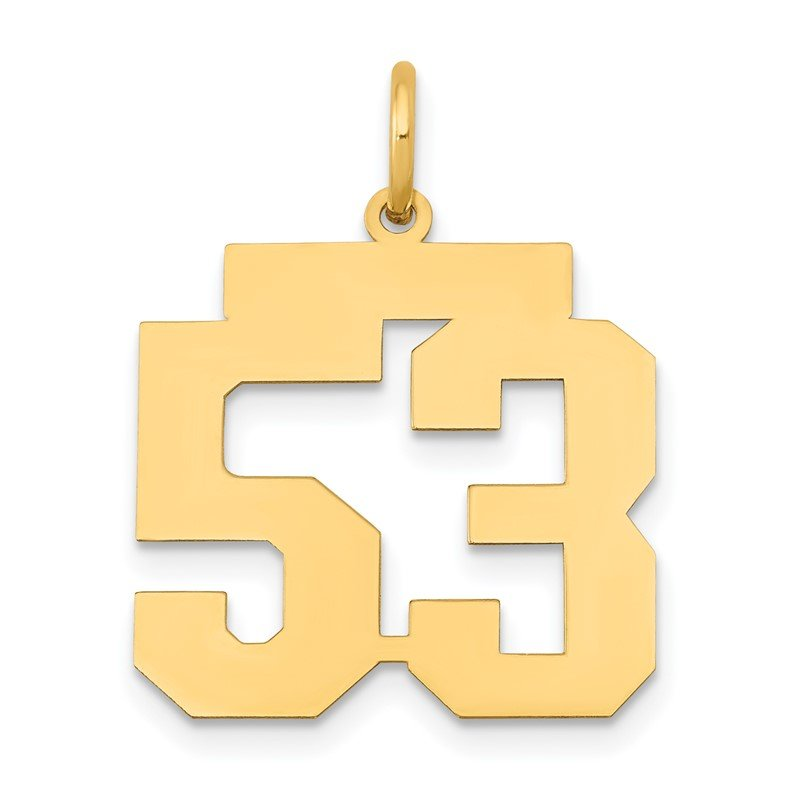 Quality Gold 14k Medium Polished Number 53 Charm