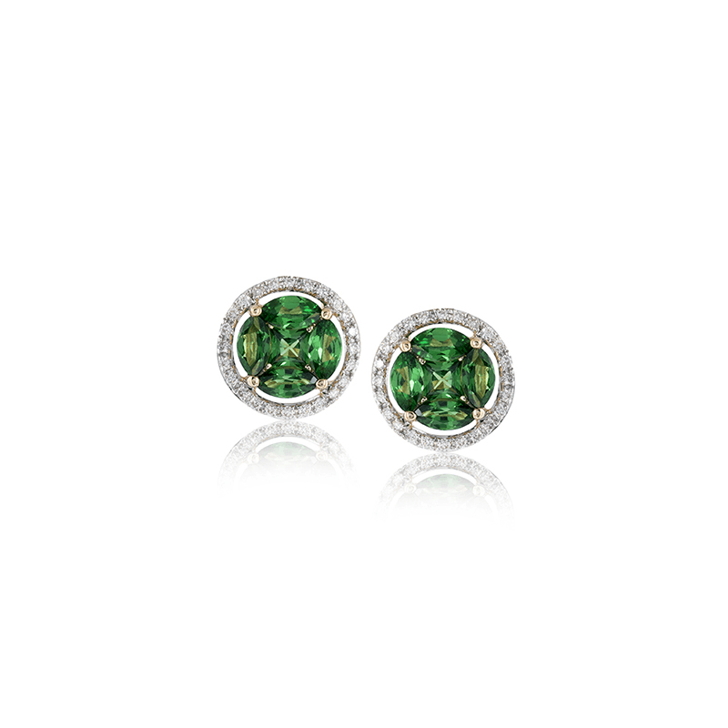 Zeghani ZE582 COLOR EARRING
