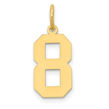 14k Medium Polished Number 8 Charm