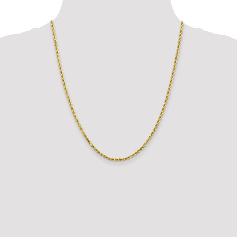 Leslie's Leslie's 10K 2.75mm Diamond-Cut Rope Chain