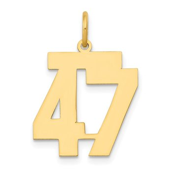 14k Medium Polished Number 47 Charm