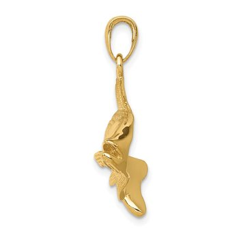 14k Polished Open-Backed Redfish Pendant