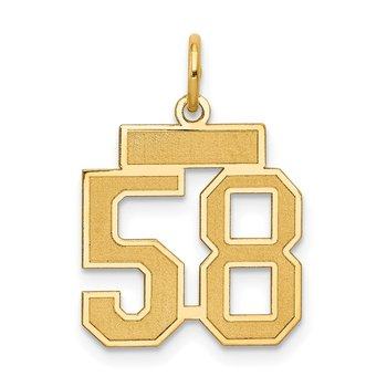 14k Small Satin Number 58 Charm