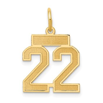14k Small Satin Number 22 Charm