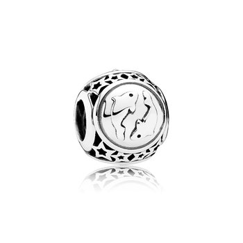 Pisces Star Sign Charm