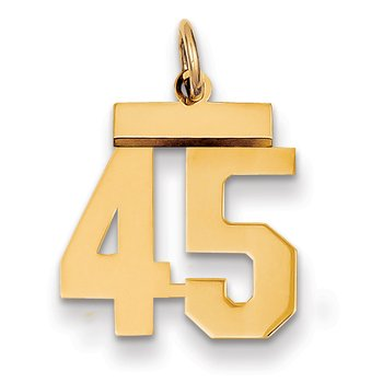 14k Small Polished Number 45 Charm