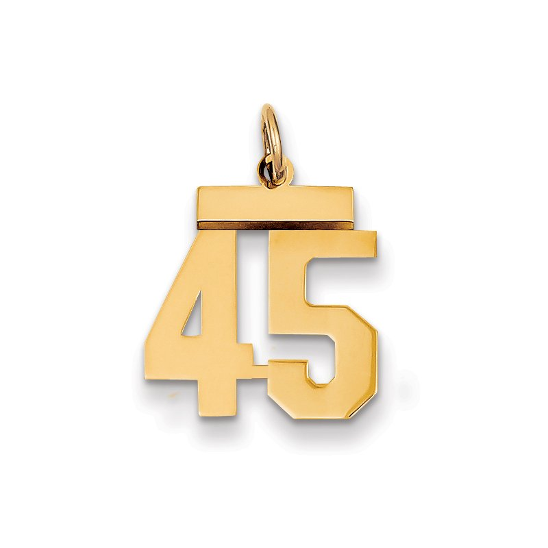 Quality Gold 14k Small Polished Number 45 Charm