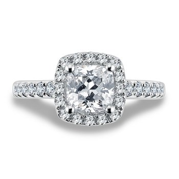 Halo Engagement Ring Mounting in 14K White Gold with Platinum Head (.48 ct. tw.)