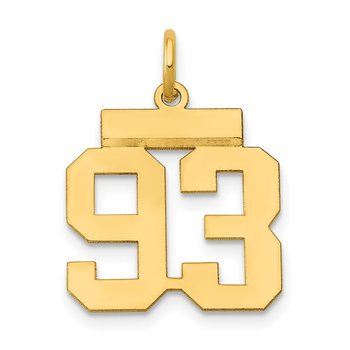 14k Small Polished Number 93 Charm