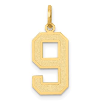 14k Medium Satin Number 9 Charm