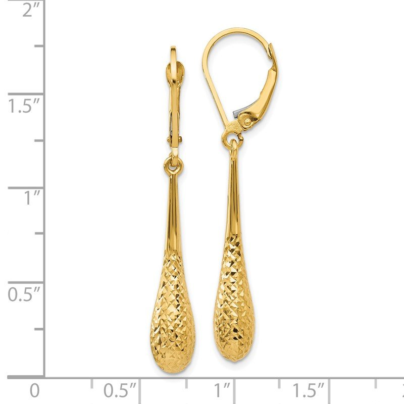 Leslie's Leslie's 14K D/C Leverback Earrings