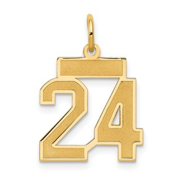 14k Small Satin Number 24 Charm