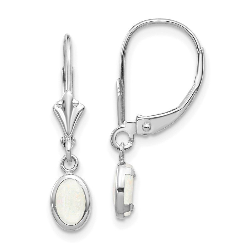Lester Martin Online Collection 14k White Gold 6x4 Oval Bezel October/Opal Leverback Earrings