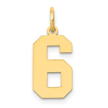 14k Medium Polished Number 6 Charm