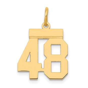 14k Small Polished Number 48 Charm