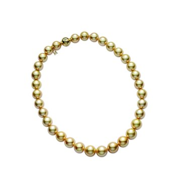 Golden South Sea Cultured Pearl Strand
