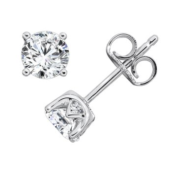 Diamond Solitaire Studs in 14K White Gold with Platinum Post
