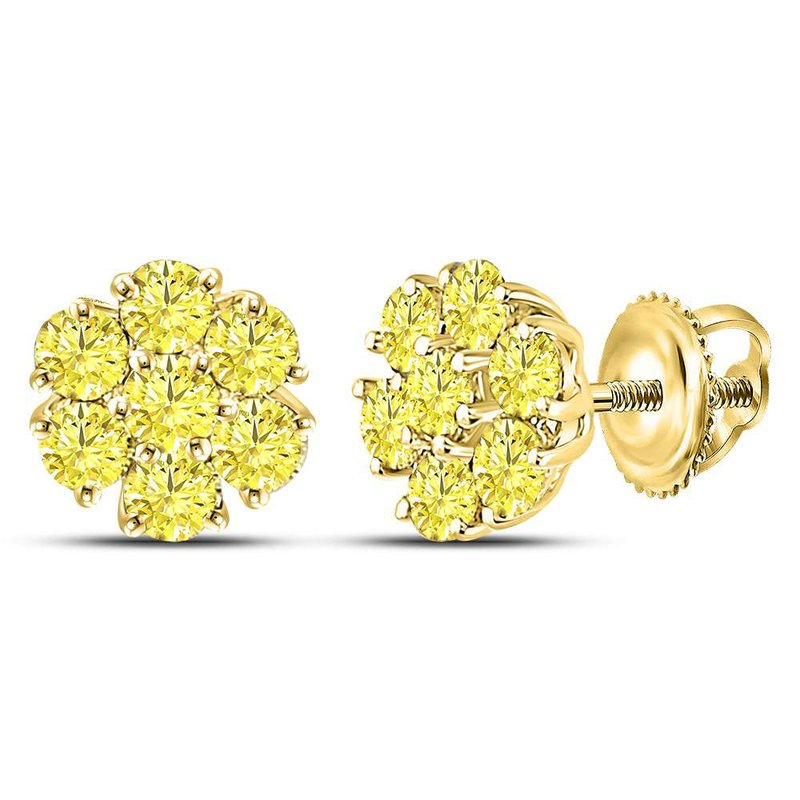 Kingdom Treasures 10kt Yellow Gold Womens Round Color Enhanced Diamond Cluster Earrings 3/4 Cttw