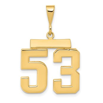 14k Medium Polished Number 53 Charm