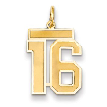 14k Medium Satin Number 16 Charm